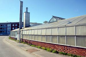 I den nuvarande detaljplanen får handelsträdgårdens tomt bara bebyggas till en liten del. Uppenbarligen gäller detta inte för växthus - som i dag täcker i stort sett 100 procent.