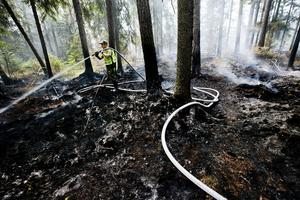 Eftersläckningsarbete i brandskogen.