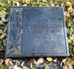 Foto: Daniel Stefansson Daniel Stefanssons släktings gravsten låg först omkullvält på graven. Sedan försvann den.
