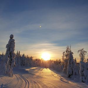 Fantastisk vackert  i skidspåret  på  Älvåsen I Hassela. Fotograf: Marlene Vesterlund