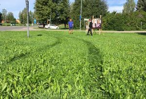 Tydliga hjulspår i gräset vittnar om att man svängt in med en bil vid partiernas plakat.