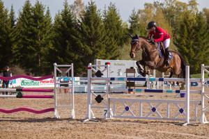 Emma Kåbring och 18-åriga stoet Thelma har varit en framgångsrik duo i många år. I veckan tävlar de på Strömsholm.