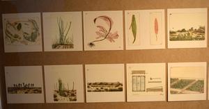 Bilderna är lite hopträngda, men det är glädjande att Sten Eklunds verk visas i Borlänge.