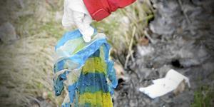 Insändarskribenten frågar sig om syftet med plastpåseskatten är att dra in pengar till statskassan eller minska antalet plastpåsar i naturen.