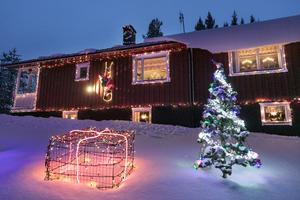 Kompostgaller klädda med nät och belysning har blivit till julklappspaket.