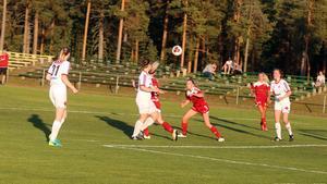 Många ungdomar ville gå fotbollsinriktningen på Härjedalens gymnasium och på kommunens högstadieskolor inledningsvis. Efterhand har intresset svalnat och det här läsåret fanns ingen som valde inriktningen på gymnasiet.