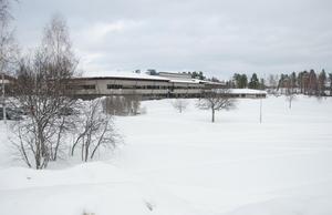 På den stora ytan mellan medborgarhuset och Ljusnan bör en aktivitetsyta med skatepark, lekpark, utegym och picknickbänkar göras i ordning, tycker Svegsbon Per-Axel Lindström.