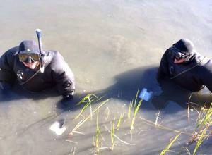 Dykningar utfördes i Harkskär utanför Gävle i september. Bland annat hittades dumpade hårddiskar.