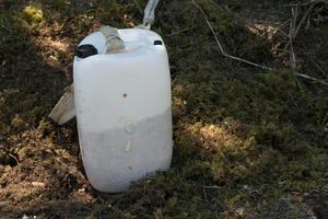 Vildsvinen måste vända på kanistern för att få ut ärtor och majskorn genom de små hålen.