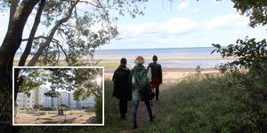 En öppning mellan skogen och havet på Billudden blir en port mellan det lummiga och det öppna . En känsla som kan överföras till en bostadsgård på Nordost.
