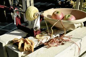 Äpplet i centrum. Utställningen visar inte bara äpplen utan även hur de ska beskäras, förvaras och förädlas.