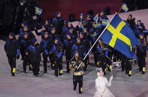 Niklas Edin bär den svenska fanan under OS-invigningen. Bild: TT.