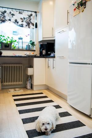 Det svarta och vita går igen i köket.