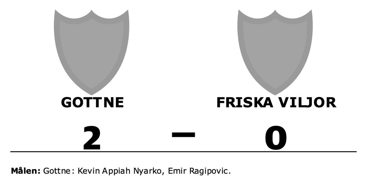 Kevin Appiah Nyarko och Emir Ragipovic matchvinnare när Gottne vann mot Friska Viljor