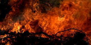 Inte ovanligt att eldningar på tomten går överstyr, enligt Södertörns brandförsvarsförbund. Foto: Hasse Holmberg/TT