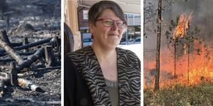Åsa Älander deltog nyligen i en konferens och berättade om frivilliginsatser vid bränderna 2018.