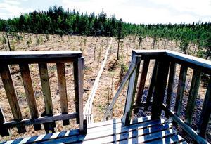 Utsiktstornet på Rävlarna. Arkivfoto