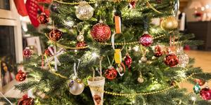 Som symbol är julgranen, ganska bokstavligt, mångfacetterad. Foto: Gorm Kallestad, NTB scanpix, TT.