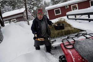 Skotta skit, snö och mata djuren är några av de uppgifter som måste göras dagligen.