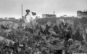 På Älvtomta koloniområde på Väster är denna bild tagen, år 1919. Barnen på bilden heter Arne och Birgit Lundh. Foto: Örebro stadsarkiv/Erik Samuel Lundh