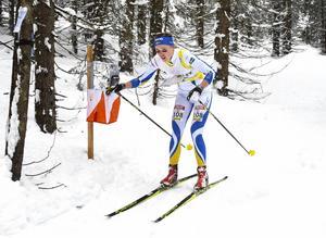 Tove Alexandersson har också varit bäst i världen i skidorientering i flera år. Men nu har hon tagit en paus för att satsa på skidalpinism i stället. Foto: Stina Loman/Orienteringsförbundet