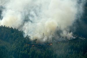 Del av branden fotad från luften, under onsdagen.Foto: Maja Suslin / TT