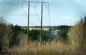 Jämtkraft vill, tillsammans med sex andra bolag, köpa Fortums svenska elnät.