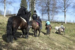 Hästarna i hagen vid Västanå. Maries dotter Sandra Agerbrink (bilden längst till höger) har inte bara sällskap av hästar, utan även av en hund.