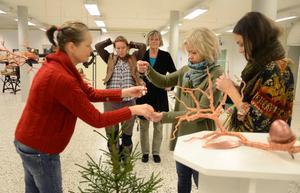 Förbereder. Fåglar å andra flygfän är temat när fem kvinnor och konstnärer ställer ut på Galleri Blå Soffan.