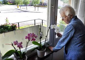 """Stina Persson har numera sin balkongdörr låst och med säkerhets-  kedja. """"Jag vägrar gå ut på balkongen efter det som hänt"""", säger hon."""