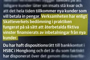 Från Skatteverkets granskning av Kambua-ägarens inkomster: