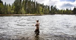 Länsstyrelsen får 5,1 miljoner för att gynna vatten inom Storsjöns vattensystem. Åtgärderna kommer även att påverka turistfisket i regionen.