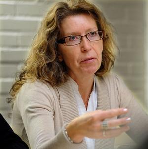 Dalacenterns ordförande Lena Reyier ställer sig skeptisk till det förslag till idéprogram som bland andra Leksands kommunalråd Ulrika Liljeberg (C) har utarbetat.