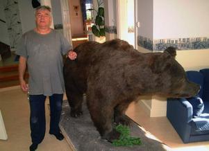 Hanz Jankoviz med Ragundabjörnen som han fått låna av Ragunda kommun att fungera som attraktion i tre år i sitt turismföretag i Stugun.Foto: Ingvar Ericsson