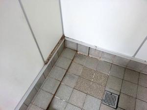 Hälsoinspektörerna hittade bland annat bortnötta fogar och murkna trälister i duscharna på Opeskolan.