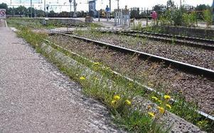 Att stationsområdet behöver renoveras och fräschas upp är alla eniga om. Det är kostnaderna som debatterats.Foto: Karin Sundin
