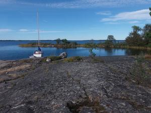 Vacker vik med kvällssol. Just utanför Herräng ligger ett pärlband av  relativt okända öar.