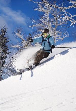 Alpin utförsåkning har länge varit en säker inkomstkälla för bland annat Skistar. Men de två senaste åren har vinstmarginalerna gått ner. Det är inte bra för utvecklingen av destinationerna. Konceptet verkar behöva någonting mer.