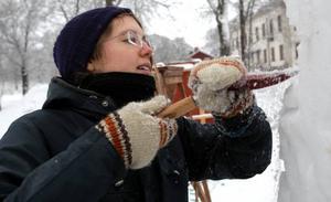 Tove Lindström tävlade med trädgårdsmästarprogrammets lag och deras plan var att karva fram väsen ur en brunn. I brunnen skulle förstås också tulpaner stå.