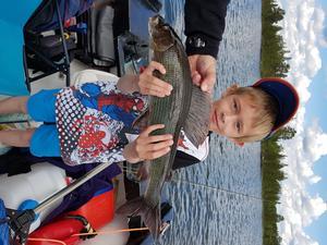 Mattias Larsson, 8 år, har fångat harr i Tännäs.