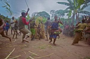 I Kongo-bäckenets regnskog lever aka-folket. Skogsfolkets liv kommer att förändras av skogsavverkning och mötet med det moderna samhället.Foto: Folkets Bio
