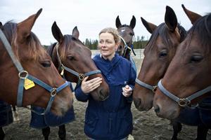 Malin Connysson på Wången har bara positiva omdömen om de 16 hästar som ingår i den världsunika studie som just nu genomförs på Wångens travskola.