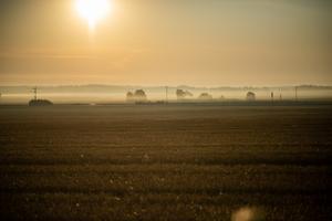 Finns egentligen inte så mycket mer att berätta än att så här års så är det väldig fina morgnar när solen skiner och dimman lättar. Foto: Thomas Nordström