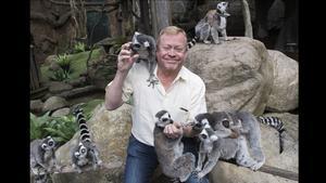 Jonas Wahlström, här med lemurer på Skansenakvariet.