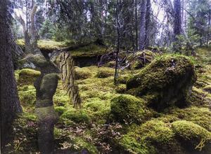 Arnold Bunge: Skogen  vaknar