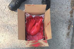 De rödfärgade plasthandskarna som hittades i en kartong utanför tingsrätten söndagen den 20 maj i år. 40-åringen nekar till någon inblandning i det som rubriceras som försök till sabotage.Foto: Polisens förundersökning