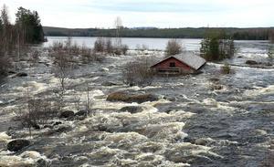 Ålhuset i Albybyn är även vid normala flöden omgärdat av vatten, men inte alls på samma nivå som nu.