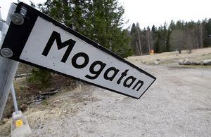 För ett par år sedan verkade det klart att vi på Mogatan skulle slippa slalombackstrafiken, skriver Kickan Bergman.