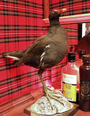 Uppstoppade fåglar och skotskrutiga väggar bidrar till känslan av Skottland.