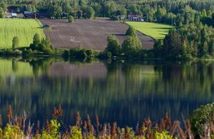 Sommarvyn över Torpsjön ingår gratis i seniorboendet som planeras i Fränsta.